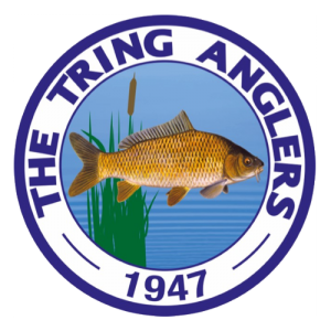 Tring Anglers