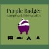 Purple badger logo (1)